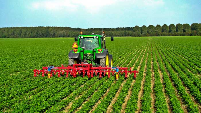 ثبت شرکت کشاورزی